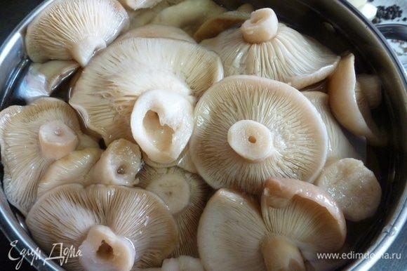 сколько времени надо варить грибы красноголовики